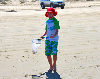 Boy finds some Clams on the beach