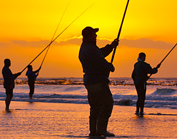 Sunset Fishing On The Beach