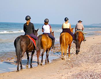 Family Horseback Riding on the Beach