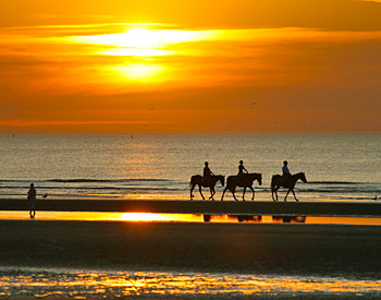 Sunset Horseback Riding on the Beach