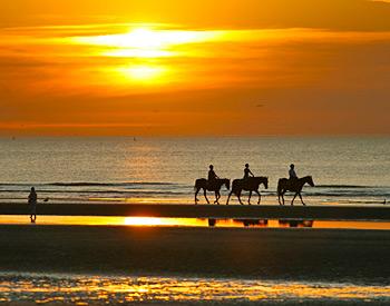 Sunset Horseback Riding On The Beach